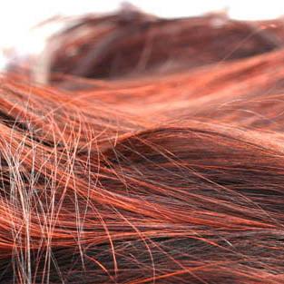 Izdelki za lase